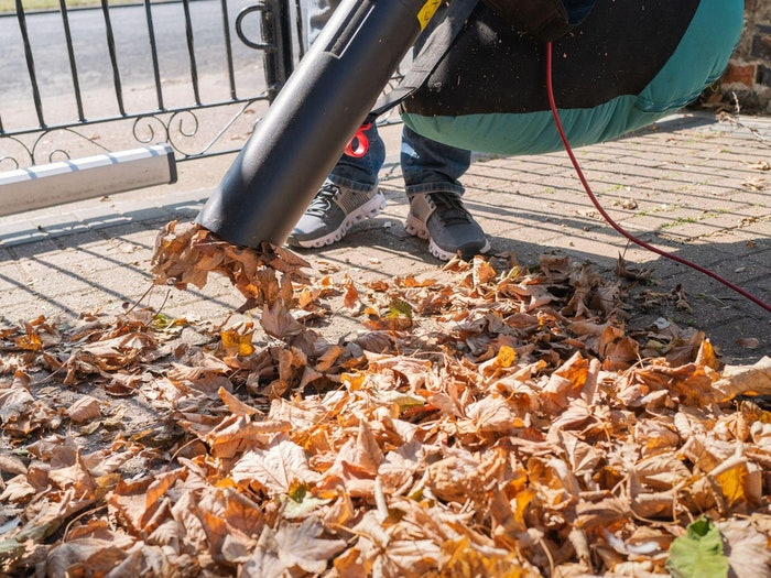 Cleaning Leaves Debris Min
