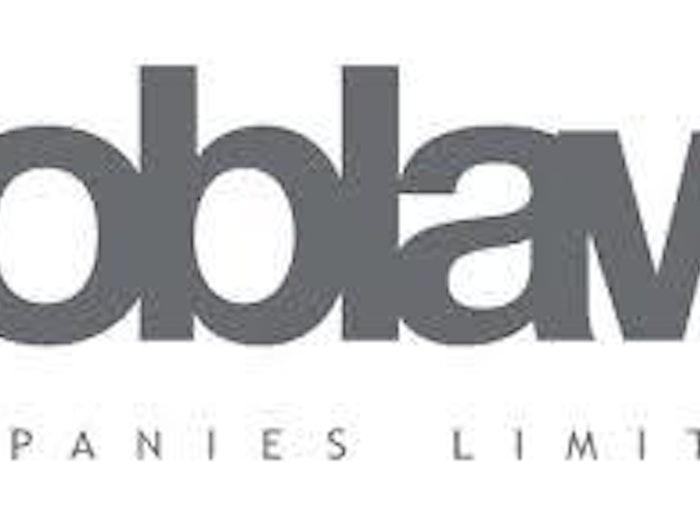 Loblow标志